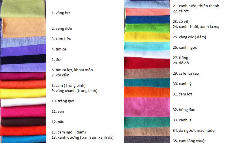 bang_mau_ao_thun_dong_phuc_cotton